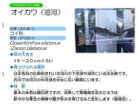 9ページ。ファイル名: 10s-5.jpg